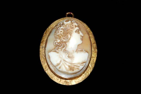 223: CARVED SHELL CAMEO IN 10K YELLOW GOLD FRAME - 1 5/