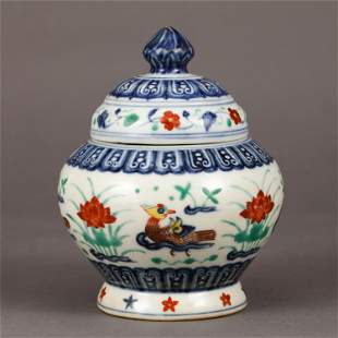 A CHINESE WUCAI PORCELAIN JAR WITH COVER