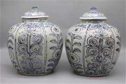 Ming Dynasty, Wanli blue and white light painting, a