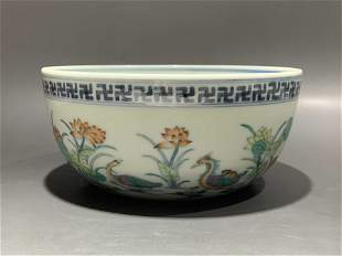 A DOUCAI  BOWL WITH MANDARIN DUCK IN LOTUS POND IN