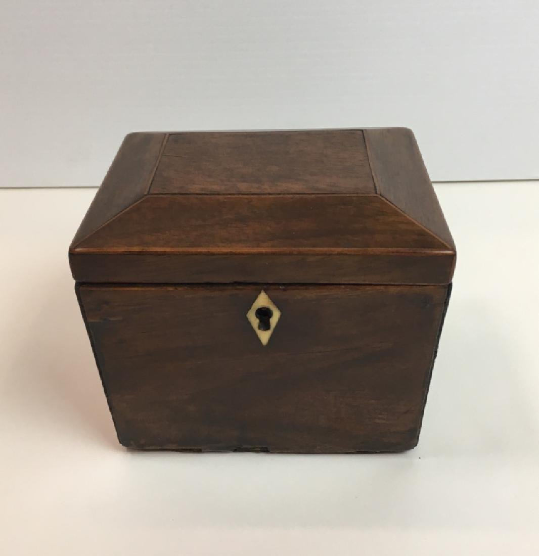 ANTIQUE MAHOGANY SARCOPHAGUS TEA CADDY