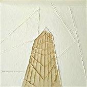 Pisani Franca - New symmetries, 2008