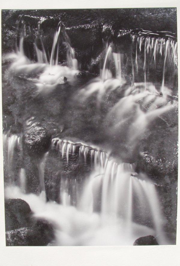 90: Ansel Adams photo 'Fern Spring Dusk'