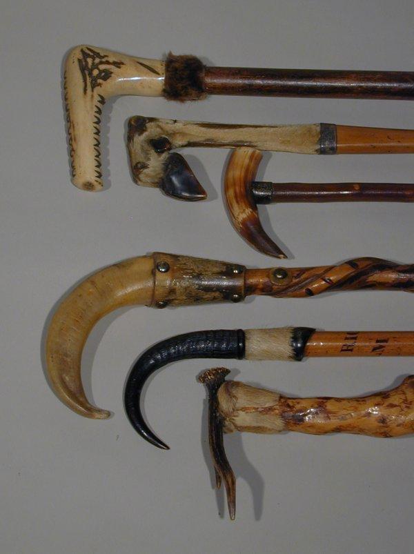 503: Antique canes and sticks