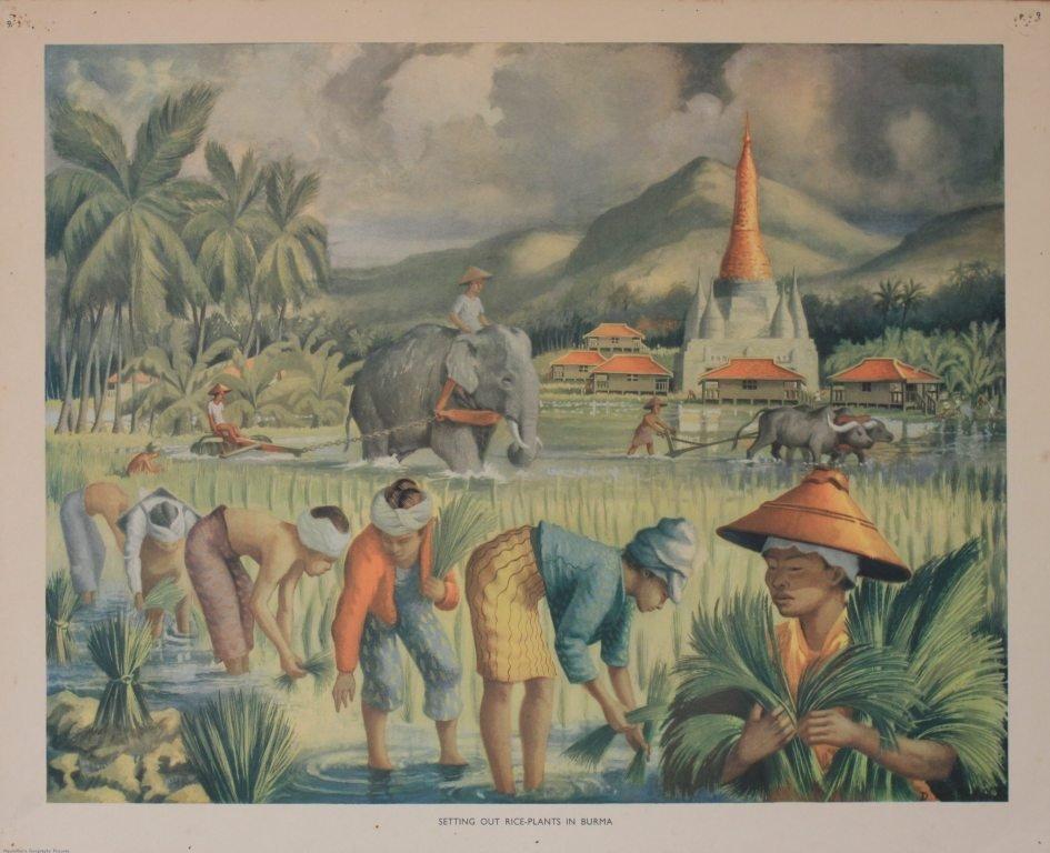 25: Macmillan's Geography Pictures, twenty-five includi