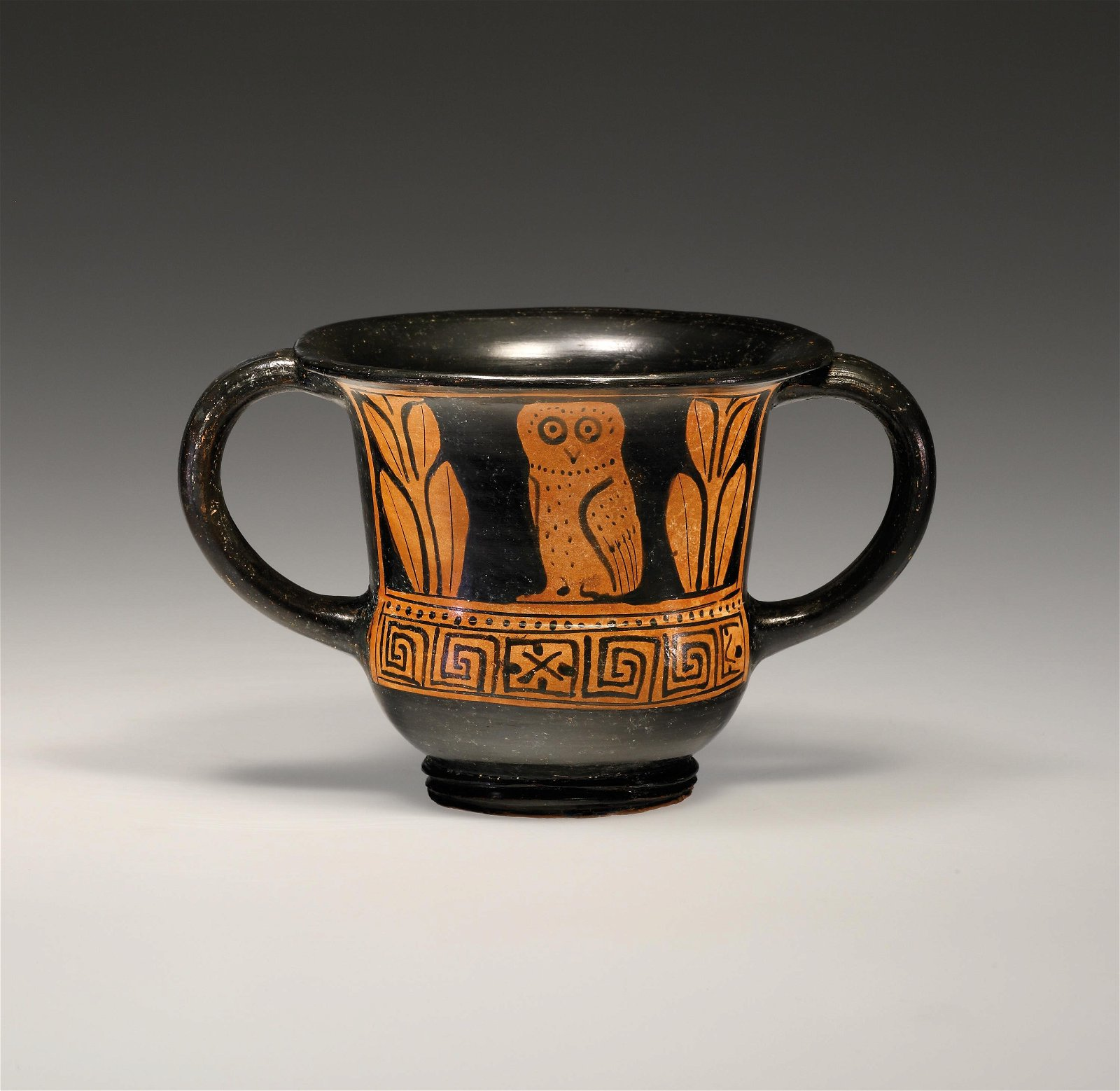 A Red-figure Kantharos with Owl