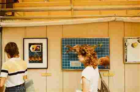 WILLIAM EGGLESTON Woman at Art Show 1984