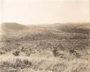 4 PANEL Panorama Lower Hills & Fauna, Uganda 1906