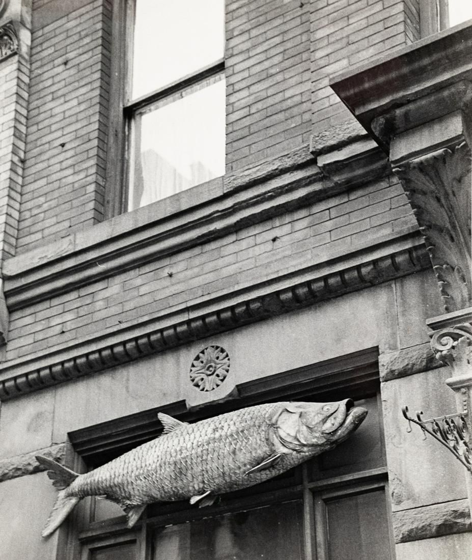ANDRE KERTESZ Fish classic Architecture NYC 1963