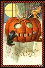 2215: Rare�Schmucker�Frexias�Halloween�    Halloween�Gr