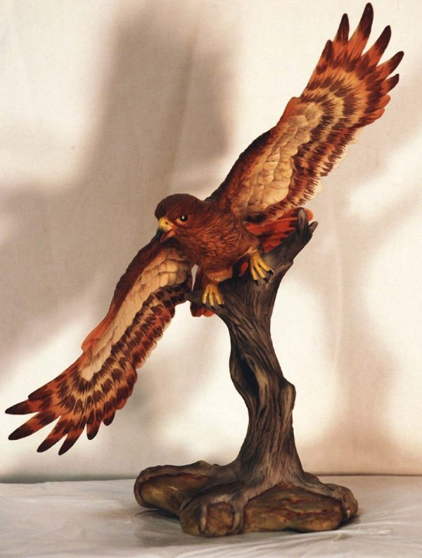 2: Boehm Red-Tailed Hawk