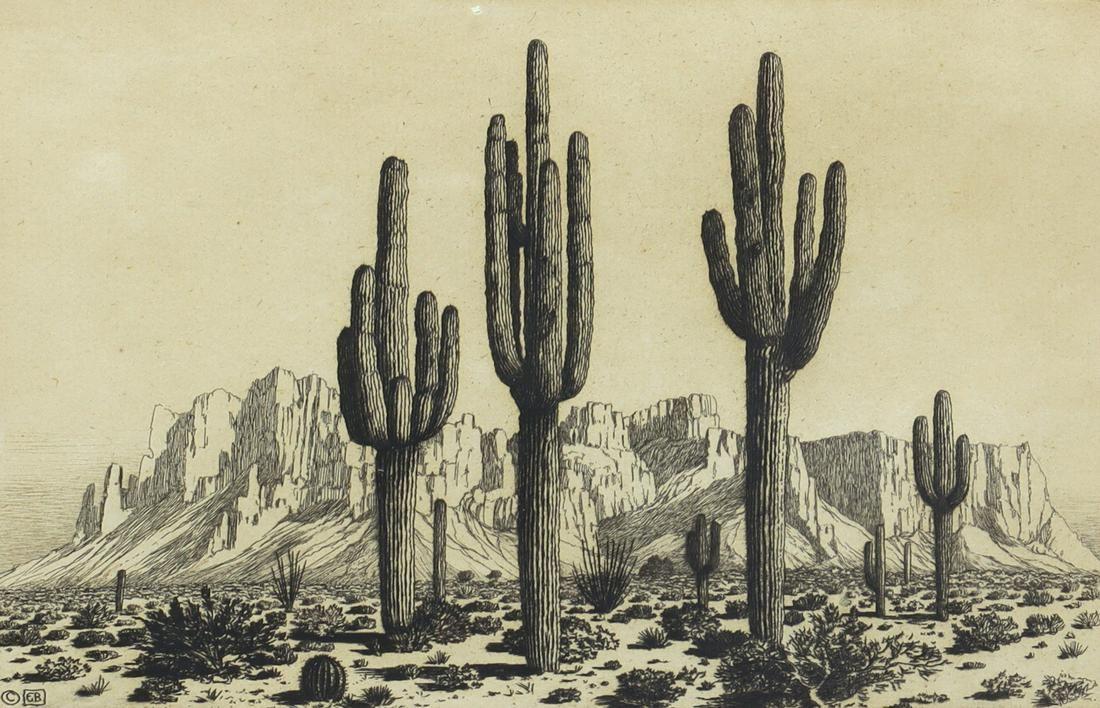 George Elbert Burr - Superstition Mountains