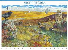 Nature of America: Arctic Tundra Stamps
