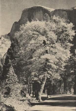 Ansel Adams Menu Illustration Yosemite, 1937