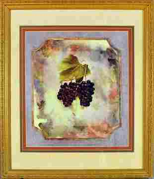 Black Grape with watercolor Background