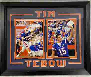 Tim Tebow Decorator Picture