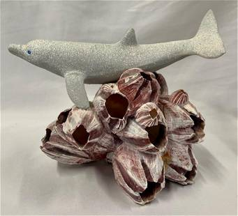 Dolphin on Barnacle Cluster