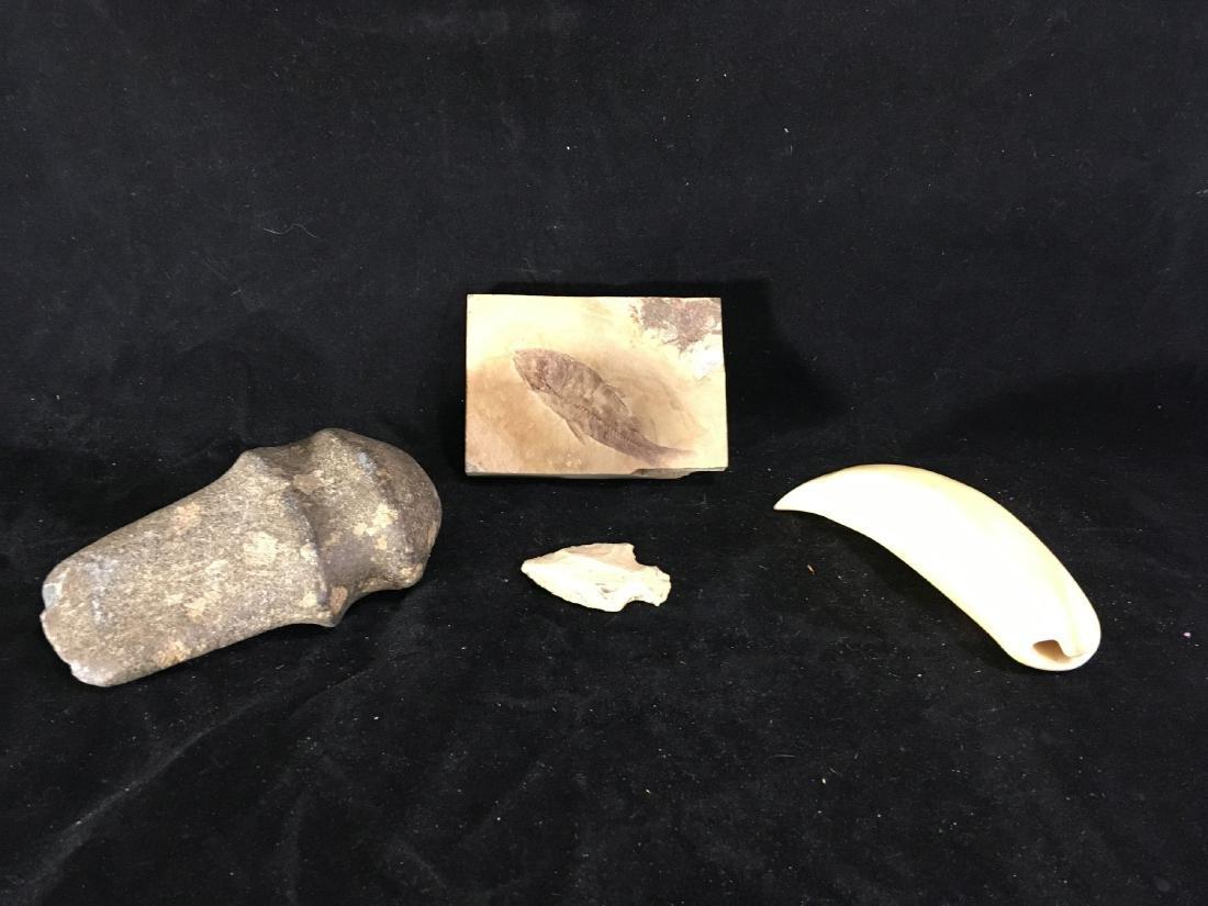 A FISH FOSSIL , EARLY STONE AXE HEAD, ARROWHEAD ETC.