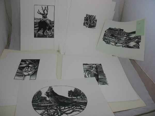 915022: GROUPING OF PRINTS OF ANIMALS BY MICHAEL MCCURD