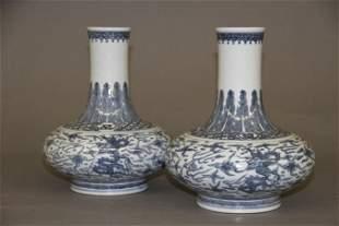 Pair Blue And White Porcelain Bottle Vase