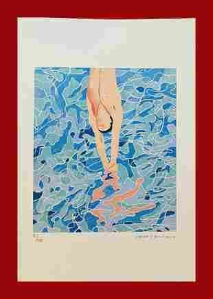 David Hockney - The Diver