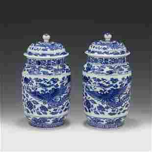 A PAIR OF CHINESE BLUE&WHITE PORCELAIN VASES AND