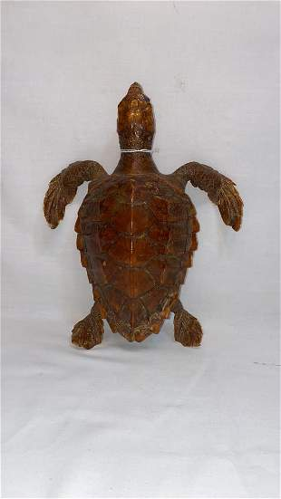 """ANTIQUE TAXIDERMY ~ 11 1/2"""" LONG"""