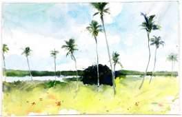 """Stephen Scott Young, Watercolor, """"Hatchet Bay Coconuts"""""""