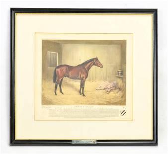 Voss, Franklin Brooke Signed Equestrian Horse Print