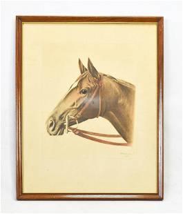 WALLACE Race Horse Print 'Shut Out'. ca 1943