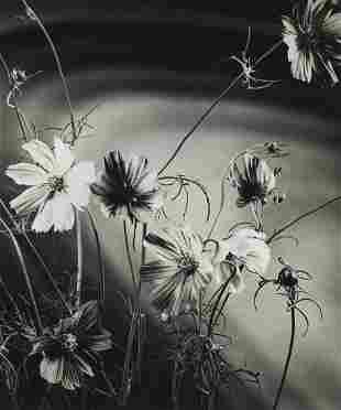 Roland Spedden, untitled, Floral Still Life, c. 1940s