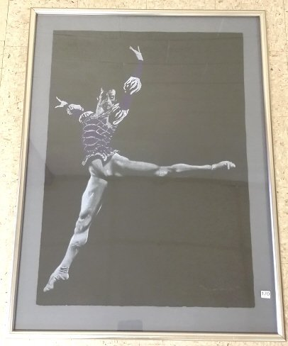 Framed signed & numbered 53/300 litho of Baryshnikov
