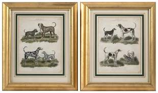 PAIR OF HAND-COLORED ETCHINGS FEATURING DOGS