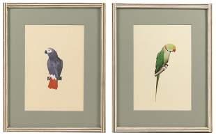 VIVEK KUMAVAT (India, Contemporary), Two portraits of