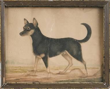 AMERICAN SCHOOL (19th Century,), Portrait of a dog.,