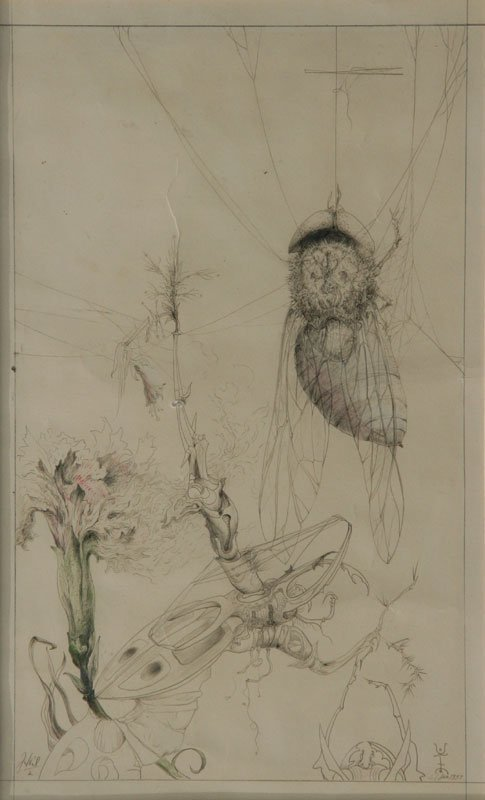 Joseph H. Heil, Insect and Plant Forms