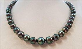 8x11mm Shimmering Peacock Tahitian pearls - 925 Silver