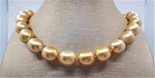 Large 13x14.5mm Golden South Sea Pearls - Necklace
