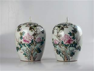 Qing dynasty 17th-19th century famille-rose enamels
