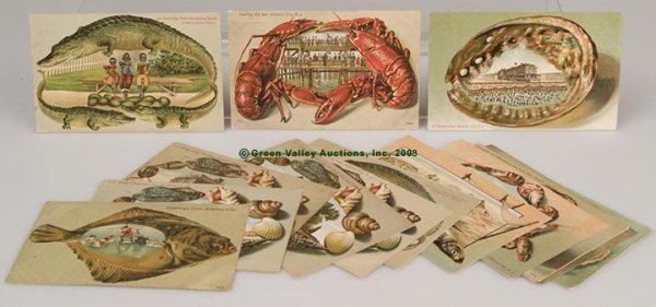 612: VARIOUS NOVELTY BORDER SCENIC POST CARDS, LOT OF 1