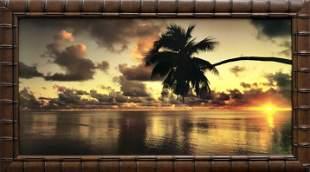 Tropical Paradise Embellished Photograph