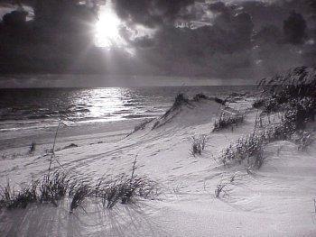"Clyde Butcher Photgraph ""Dunes""  34 x 55 ins."