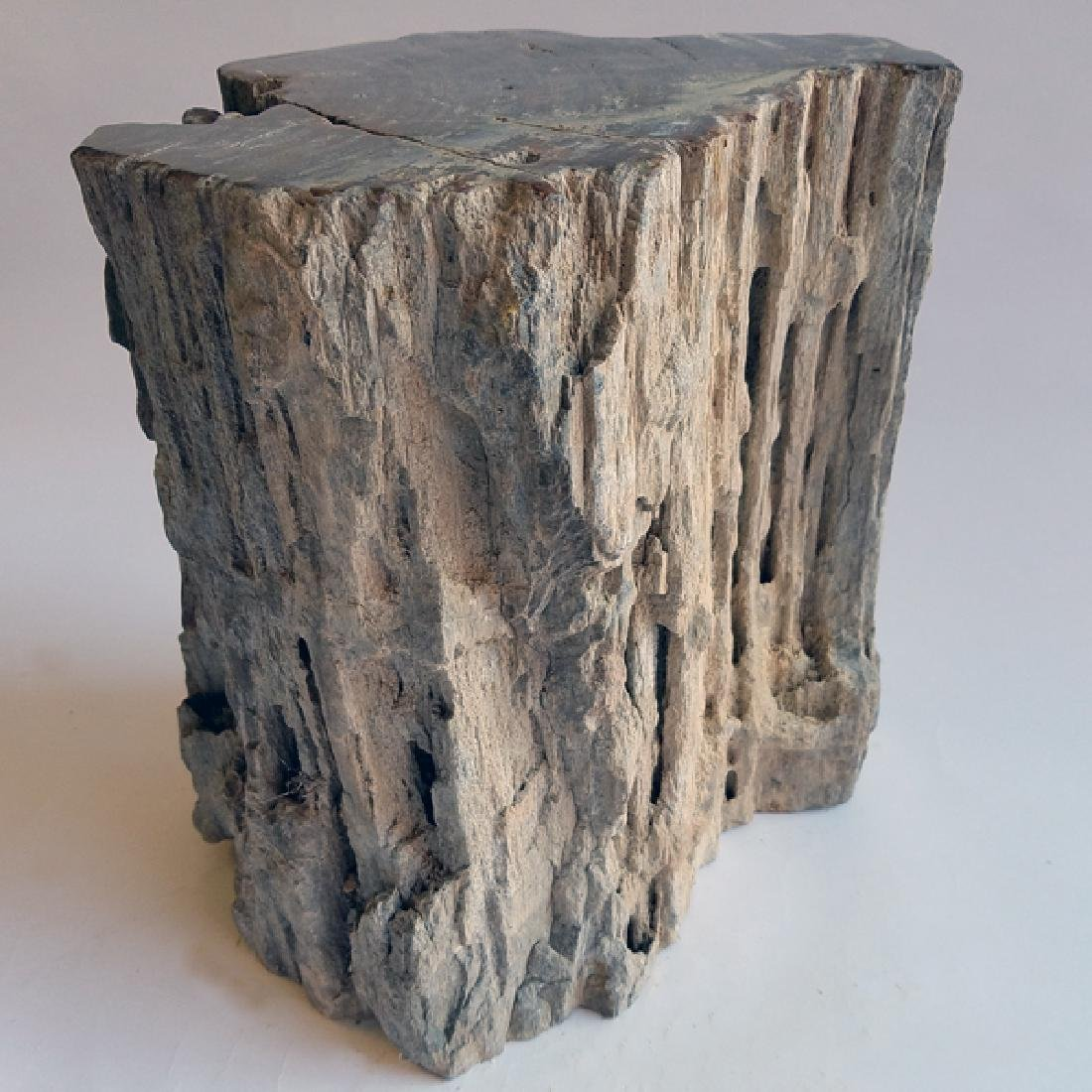 Petrified Wood Stump SCARCE HUGE 240Kg Natural Bark