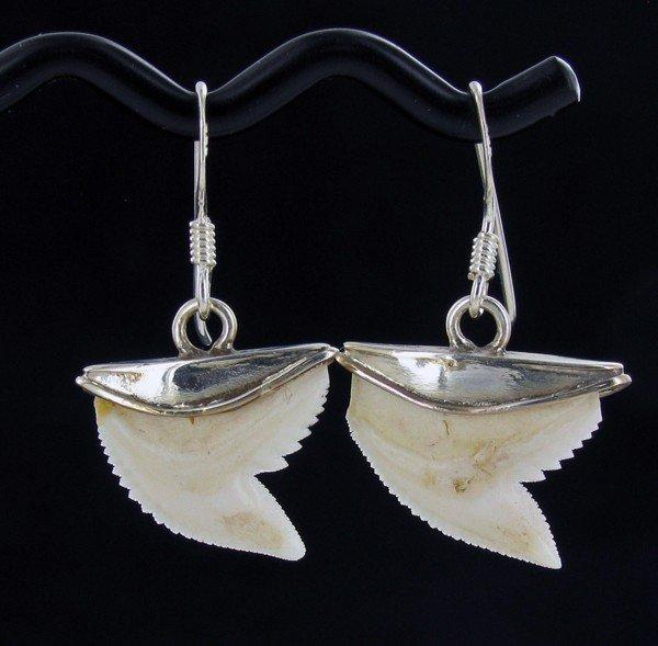 6: Sterling Shark Ivory Earrings