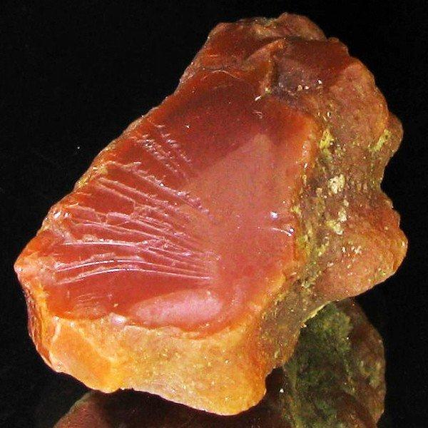 32: 48.69ct Black Opal Rough Natural  EST: $42 - $84 (G