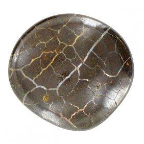 295ct Australian Boulder Opal