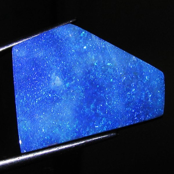 1232: 12.1ct Australian Black Opal Doublet Full Fire