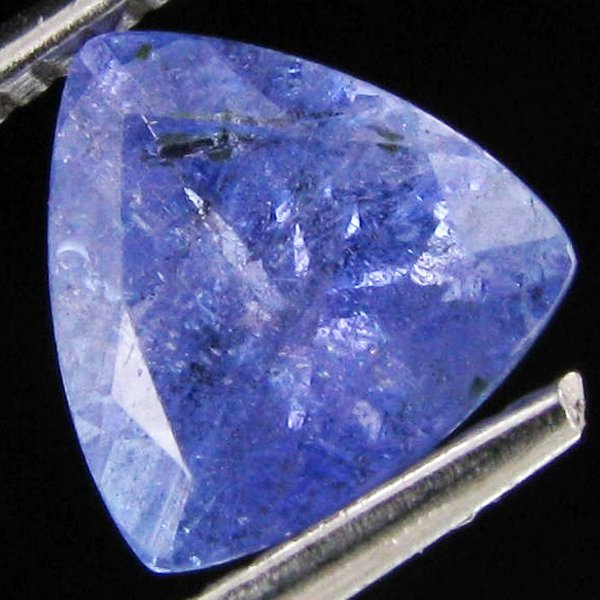 1.5ct Top Color Tanzanite Trillion
