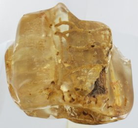 965ct Natural Peru Amber Polished Rough W/inclusions
