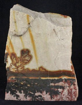 1915gm Utah Dendrite Slab Specimen